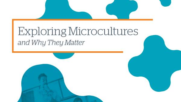 The cover to 2017's Exploring Microcultures and Why They Matter